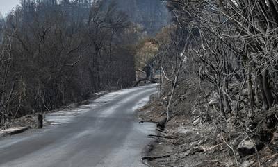 Πυρκαγιές: Αγωνία για αναζωπυρώσεις σε Μάνη και Γορτυνία