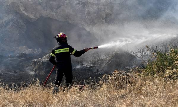 Μάνη: Υπό μερικό έλεγχο η πυρκαγιά στη Δρυάλια