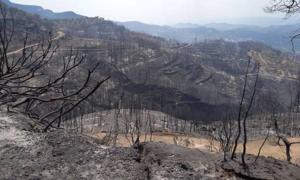 Ανάγκη άμεσης ενίσχυσης της αντιπλημμυρικής θωράκισης των πληγεισών από τις πυρκαγιές περιοχών