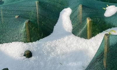 Χαλάζι έριξε αυγουστιάτικα στα Άνω Δολιανά Αρκαδίας (photos)