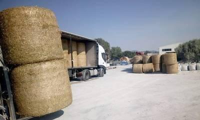 Επιπλέον 18,5 τόνοι ζωοτροφών για τους πυρόπληκτους κτηνοτρόφους της Μάνης
