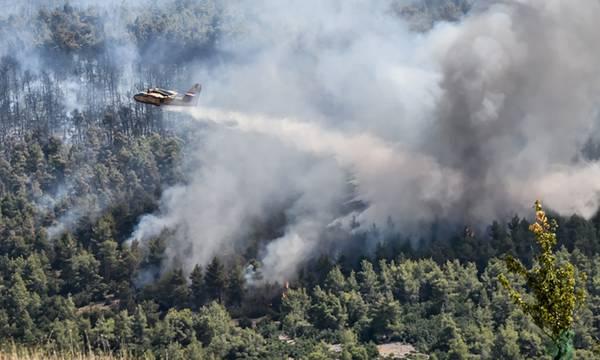 Αστεροσκοπείο Αθηνών: Έως τα Αντικύθηρα o καπνός των πυρκαγιών