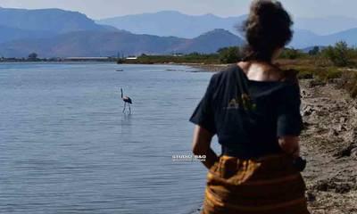 Ελεύθερο και υγιές το μικρό Φλαμίνγκο στον υδροβιότοπο του Ναυπλίου! (photos-video)