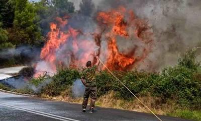 Πυρκαγιές: 7 με 8 στους 10 αναγνώστες του notospress.gr βλέπουν χείριστη διαχείριση!