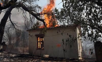 Πυρκαγιές: Ξεκίνησαν οι αιτήσεις στην πλατφόρμα arogi.gov.gr για τους πυρόπληκτους