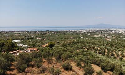 Πωλείται οικόπεδο 4.220 τ.μ. με υπέροχη θέα στην Καλαμάτα (Φαρές)