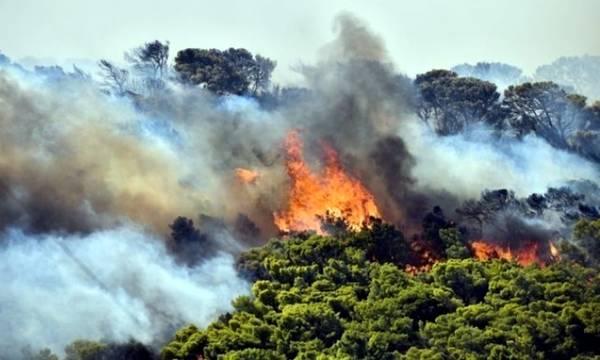Χρειάστηκαν 28 υπογραφές για να συζητήσει το ΠεΣυΠ για τις Πυρκαγιές σε 3 Νομούς