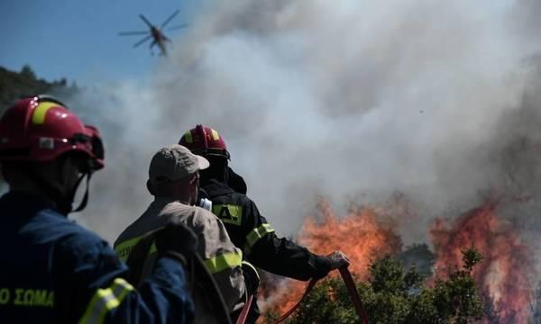 Παραμένει πολύ υψηλός ο κίνδυνος πυρκαγιάς στην Πελοπόννησο!