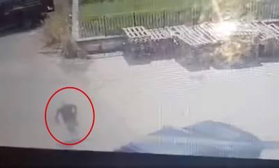 Απερίσκεπτος, έκλεψε αυτοκίνητο στη Σκάλα Λακωνίας μα τον κατέγραψε η κάμερα (video)