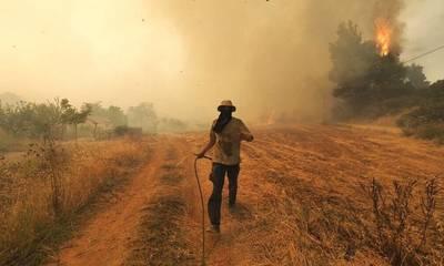 «Με ποιόν τρόπο θα καλυφθούν οι καταστροφές από τις πυρκαγιές στους αγρότες;»