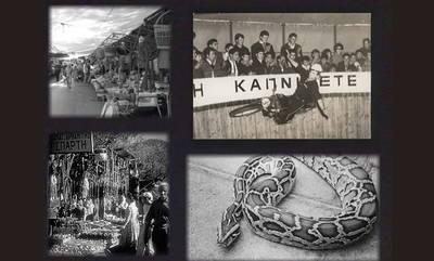 Πανηγύρι Μυστρά, 1967: «Σύλληψις πύθωνος» με… λιόπανο!