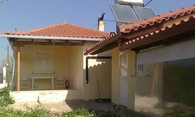 Πωλείται μονοκατοικία 60 τ.μ. σε οικόπεδο 3.815 τ.μ. κοντά στην Αμαλιάδα