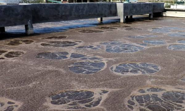 Ελαφρώς μειωμένο το ιικό φορτίο κορωνοϊού στο Βιολογικό Καθαρισμό Kαλαμάτας