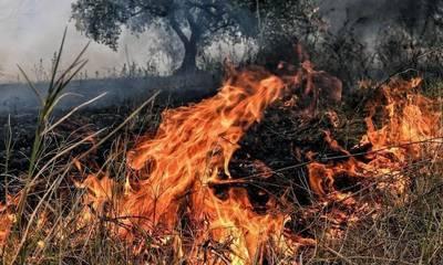 Πολύ υψηλός κίνδυνος πυρκαγιάς για τον Δήμο Μονεμβασίας την Τρίτη 7 Σεπτεμβρίου
