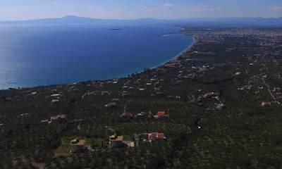 Πωλείται οικόπεδο 10.600 τ.μ. με μαγευτική θέα στη Βέργα Καλαμάτας