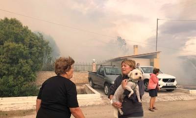 Άργος: Φωτιά στην Αγία Άννα στο Τημένιο (photos)