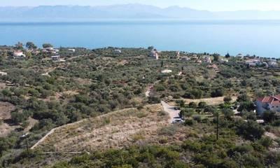 Πωλείται οικόπεδο 2.350 τ.μ. στην Επισκοπή Μεσσηνίας