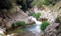 ΕΟΣΚ: Πεζοπορία στο ρέμα της Καρυάς στο Νερόμυλο