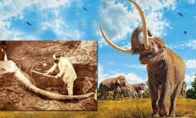 Κι όμως η κεντρική Πελοπόννησος είχε ελέφαντες και μαμούθ!