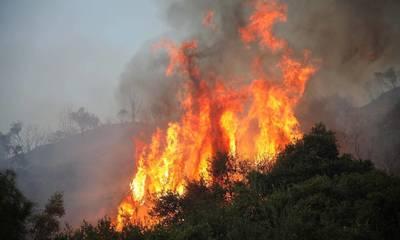 Φωτιά σε αγροτοδασική έκταση στις Μυκήνες