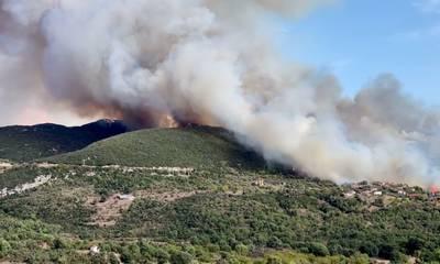Μεγάλη φωτιά στα Καλύβια Μεγαλόπολης  (video)