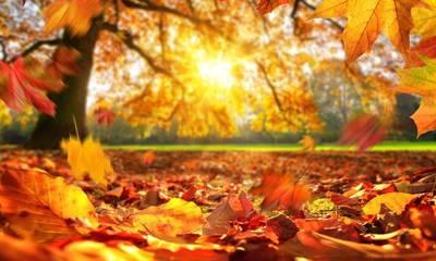 22 Σεπτεμβρίου 2021 ισημερία:  Η φθινοπωρινή περίοδος ξεκινά σήμερα
