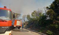 Οριοθετημένη και χωρίς ενεργό μέτωπο η φωτιά στα Καλύβια Μεγαλόπολης