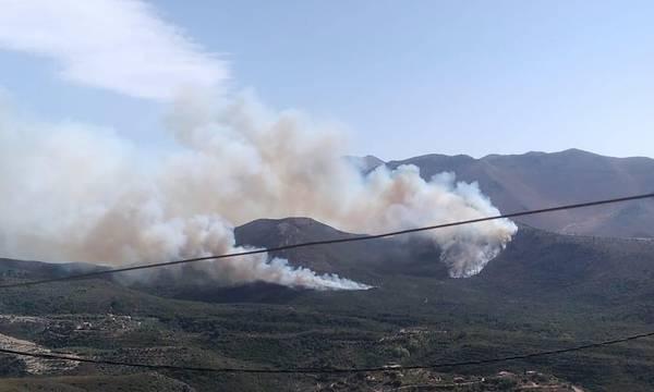 Φωτιά στην περιοχή Κελεφά στην Ανατολική Μάνη