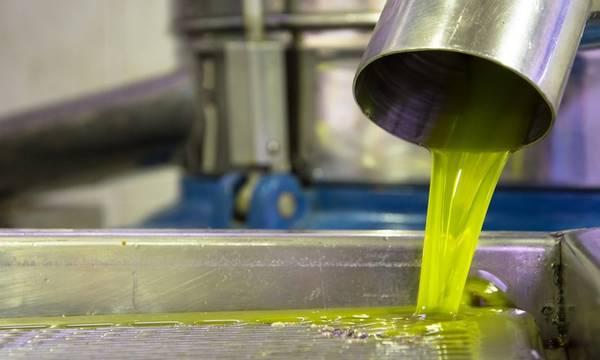 Λακωνία: Κοντά στα 4,50 € τα πρώτα αγουρέλαια – Στα 3,50 € τα περσινά