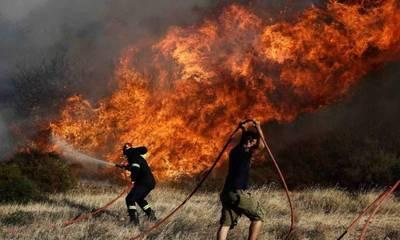 Πηνεία: Φωτιά σε δασική έκταση στα Άγναντα - Δεν απειλούνται κατοικημένες περιοχές