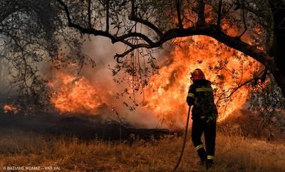 Φωτιά στην περιοχή Τζέρα Πηγάδι Αργολίδας
