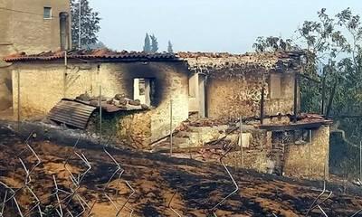 Ζητούν έκτακτη σύγκληση του Περιφερειακού Συμβουλίου Πελοποννήσου για τα έργα στα πυρόπληκτα!