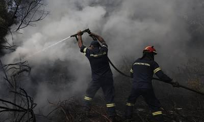 Ο Βαχός ευχαριστεί την Πυροσβεστική Υπηρεσία Αρεόπολης