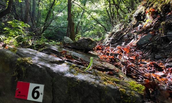 Ο Ορειβατικός Καλαμάτας στις Καρυές Λακωνίας
