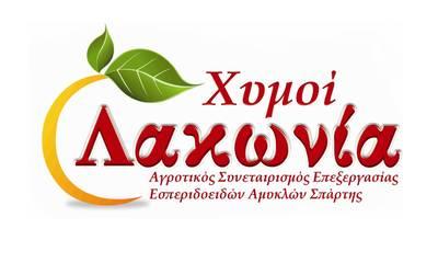 Ο Α.Σ.Ε.Ε. Αμυκλών Σπάρτης «ΛΑΚΩΝΙΑ» ζητά Λογιστή – Οικονομολόγο ΠΕ
