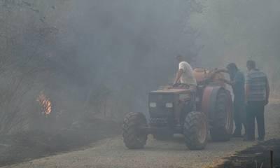 Λακωνία: Συγκέντρωση διαμαρτυρίας πυρόπληκτων αγροτοκτηνοτρόφων την Παρασκευή, στο Γύθειο (video)