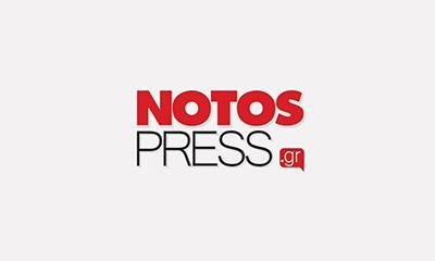 Νίκος Θωμάς: Ηθική γαστρονομία